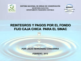 12 PRESENTACION CAJA CHICA ACTUAL- 2011 JULIO