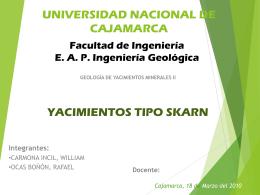 YACIMIENTOS TIPO SKARN - yacimientos minerales