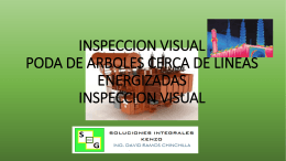 INSPECCION VISUAL PODA DE ARBOLES CERCA