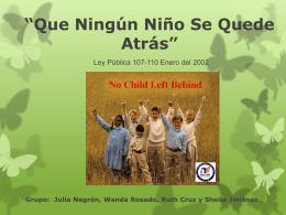 LEY *QUE NINGUN NIÑO QUEDE REZAGADO* (*NO CHILD LEFT