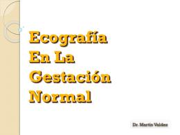 6. Ecografía obstétrica