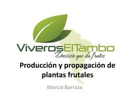 Produccion de plantas