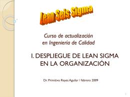 lean_sigma_org - Contacto: 55-52-17-49-12
