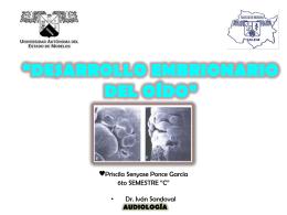 Embriología del oído - Carpe Diem – Cogito ergo sum