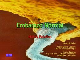 Diapositiva 1 - Los Profesionales