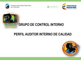 Perfil Auditores Internos Grupo de Control Interno 2015
