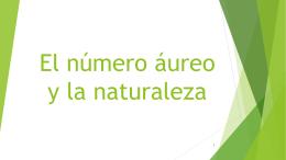 El número áureo y la naturaleza. - Intranet IES Fuente de San Luis