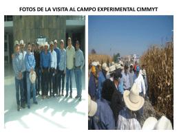 FOTOS DE LA VISITA AL CAMPO EXPERIMENTAL CIMMYT