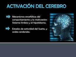 activacion-del-cerebro-natalia-lizola
