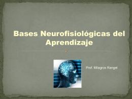 Clase 2 Bases - Psicologia-ULA