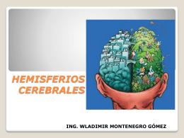 hemisferioscerebrales-120515174936