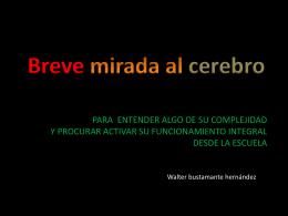 1 - CREATIVIDAD Y DESARROLLO DEL CEREBRO