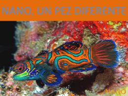 nano, un pez especial