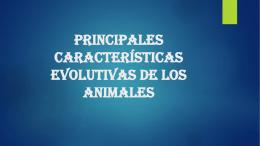 Principales características evolutivas de los animales Descripción