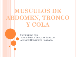 MUSCULOS DE LA ESPALDA Y EL LOMO