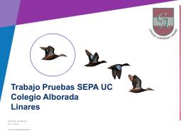 Alborada-de-Linares - Centro de Medición MIDE UC