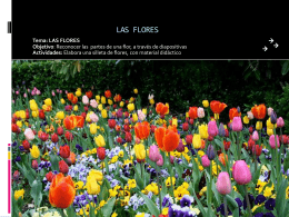LAS FLORES - WordPress.com