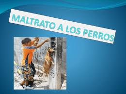 MALTRATO A LOS PERROS