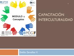 modulo 1 interculturalidad MEIC