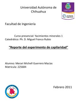 Reporte de capilaridad_Merari Michell Guerrero Macias 225684
