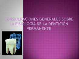 dentición permanente