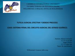 Tutela Efectiva Judicial y Debido Proceso, caso Estado Guarico