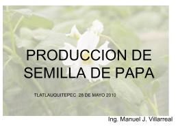 PRODUCCION DE SEMILLA DE PAPA