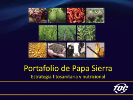 portafolio_ppt_papa_sierra