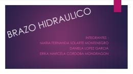 BRAZO HIDRAULICO.