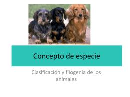 3 Concepto de especie