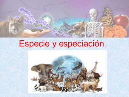 Especiación - Colegio SS.CC. Manquehue
