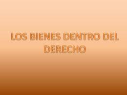 LOS BIENES DENTRO DEL DERECHO