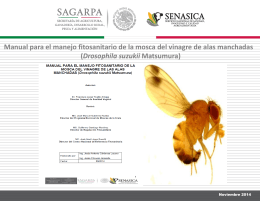 MANUAL MOSCA DEL VINAGRE