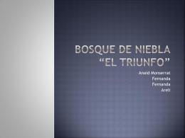 """BOSQUE DE NIEBLA """"El triunfo"""""""