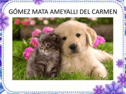 practica-numero-8_gómez-mata-ameyalli-del
