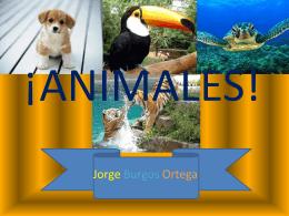 RETO ANIMALES JORGE BURGOS