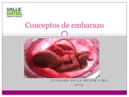 Conceptos de embarazo jes (1304453)