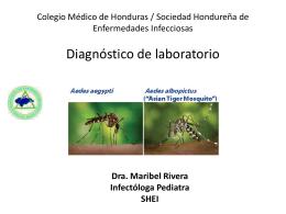 DX Lab - Colegio Médico de Honduras