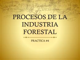 Práctica #4