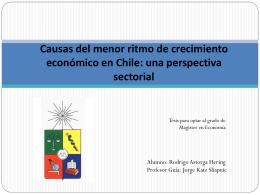 Causas del menor ritmo de crecimiento económico en Chile: una