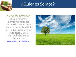 Presentación de SRS IN PLANT