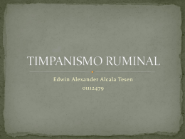 TIMPANISMO RUMINAL