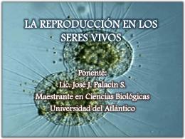 Presentación La Reproducción en los Seres Vivos.