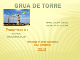 grua de torre - Salud Ocupacional SENA 2013