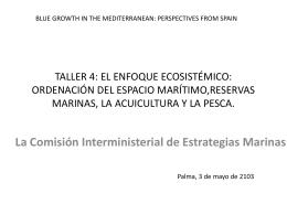 La Comisión Interministerial de Estrategias Marinas