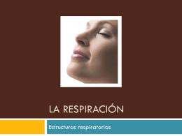 la respiración - tareasdecienciasbiologia