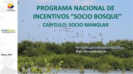 Programa Socio Manglar