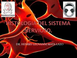 HISTOLOGIA DEL SISTEMA NERVIOSO.