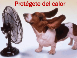 Protégete del calor Cuidados en temporada de calor