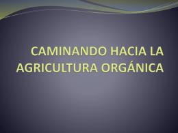 CAMINANDO HACIA LA AGRICULTURA ORGÁNICA
